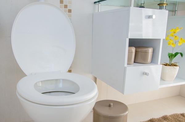 assento sanitário cuidados