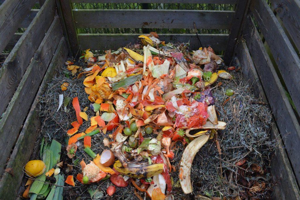 A imagem mostra uma caixa de madeira que acomoda cascas coloridas de alimentos e capim.