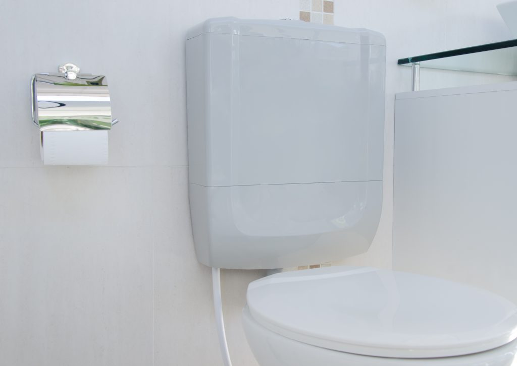 A imagem mostra um vaso sanitário com uma caixa baixa instalada, e também um papeleiro prata abastecido com um rolo de papel higiênico.