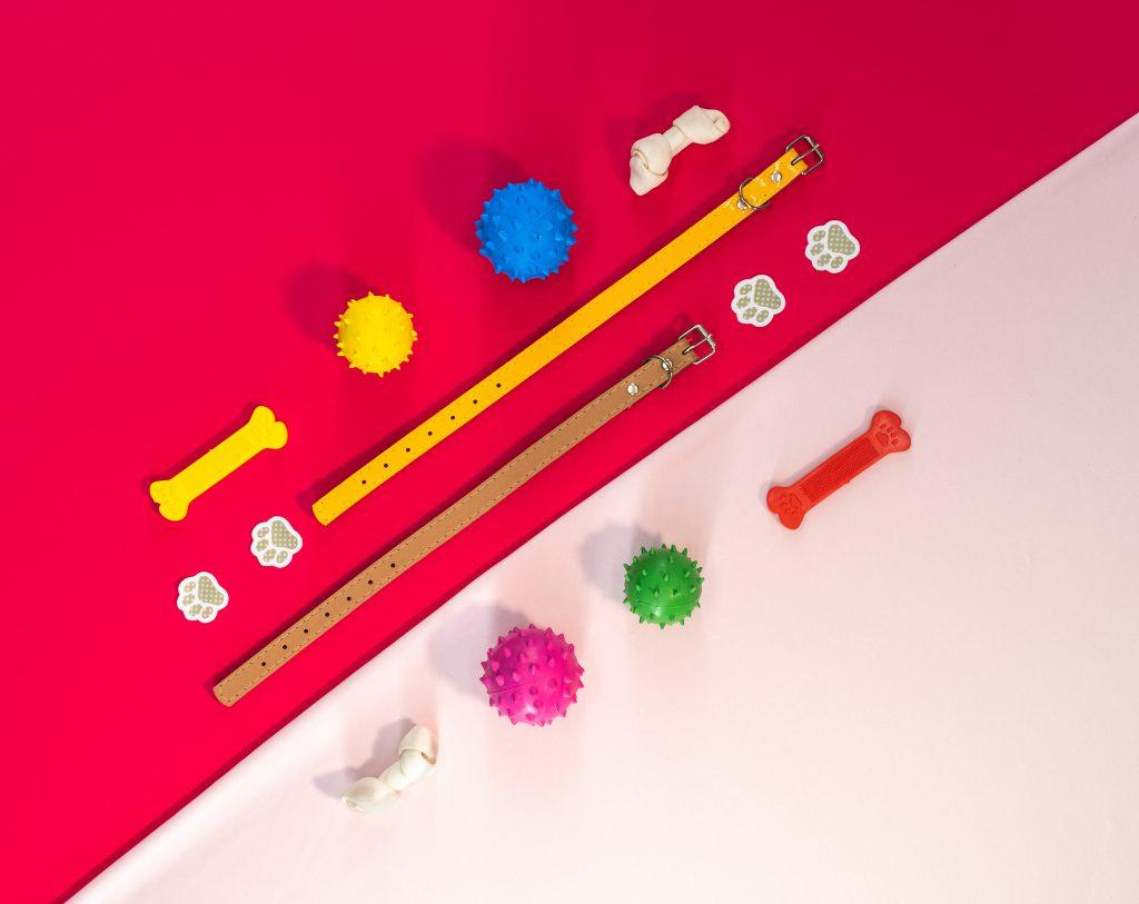 Duas coleiras, uma amarela e outra caramelo, estão sob uma superfície vermelha. Ao redor, há quatro bolinhas de borracha, dois ossinhos de plástico e dois de verdade.