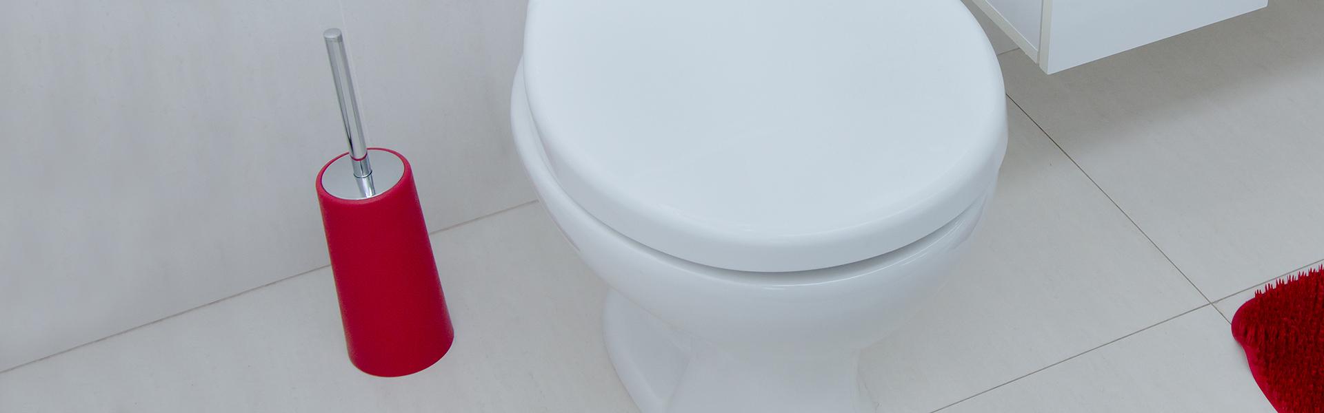 Banheiro - Escovas sanitárias